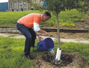 Mayor Joe Hogsett helped water trees and beautify part of a Martindale-Brightwood neighborhood.